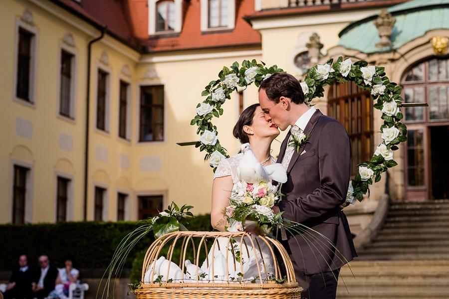 Hochzeitstauben Schloss Proschwitz